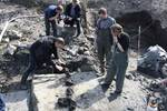 Smededammen i Jelling gemmer på masser af viden om vikingetiden