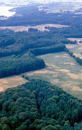 Aerial photo which shows traces of an Iron Age farm, south of Jelling. The farm is represented by rows of dark round patches. Photo: Vejle Museum.